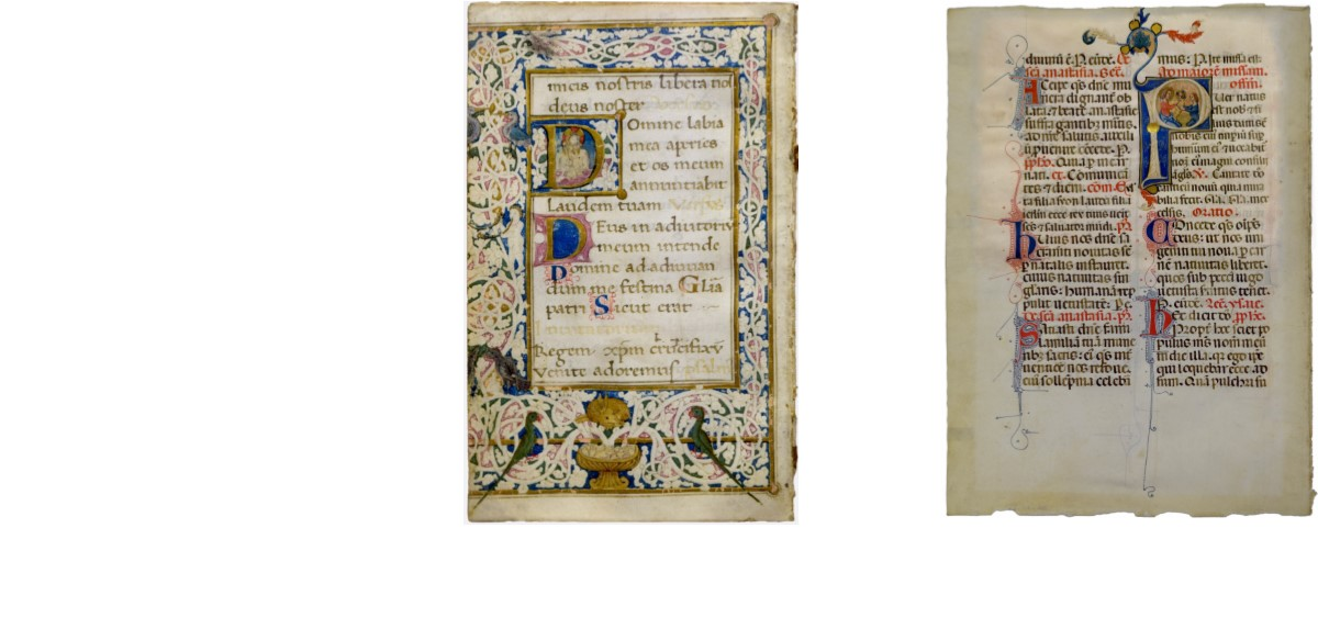 Painted Pages: Illuminated Manuscripts, 13th-18th Centuries