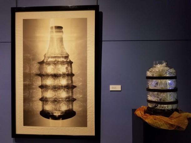 Hagerstown Garden Club: Ann Reiman Artwork: Pop Bottle by Michael C. Mendez