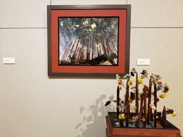 Maryland Regional Landscaping: Ben Buchanan Artwork: Shooting for the Stars by Amélie Lavenant-Wink