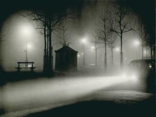 Brassaï (French, b. Romania, 1899–1984) Fog, avenue de l'Observatoire, 1934 9 ⅛ x 11 in. Gelatin silver print Collection of Michael Mattis and Judith Hochberg ©Estate Brassaï Succession, Paris